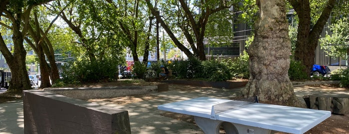 McGilvra Place is one of Seattle's 400+ Parks [Part 1].