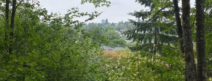 Harrison Ridge Greenbelt is one of Seattle's 400+ Parks [Part 1].