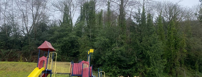 Lakeridge Playground is one of Seattle's 400+ Parks [Part 2].