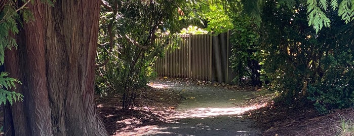 Madrona Briar Patch is one of Seattle's 400+ Parks [Part 2].