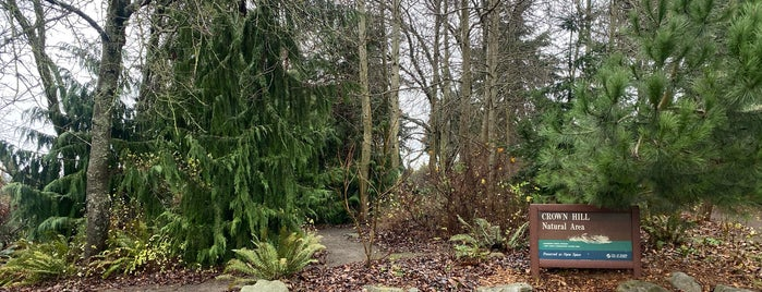 Crown Hill Glen is one of Seattle's 400+ Parks [Part 2].