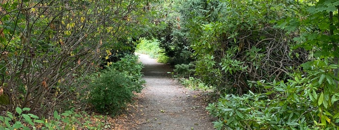 Hitt's Hill Park is one of Seattle's 400+ Parks [Part 1].
