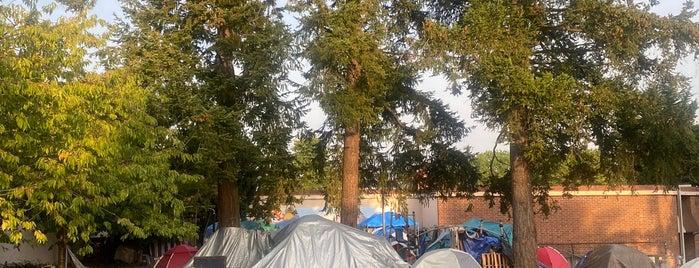 Albert Davis Park is one of Seattle's 400+ Parks [Part 2].