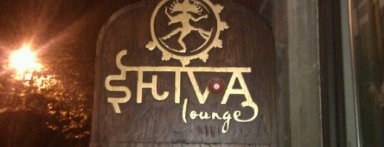Shiva Lounge is one of Good clubs for good electro music.