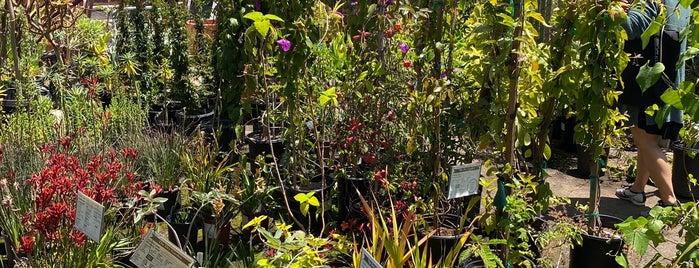 The Dry Garden Nursery is one of Oakland/Berkeley.