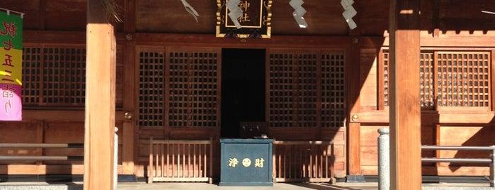 Warabi-Jinja Shrine is one of 神輿で訪れた場所-1.
