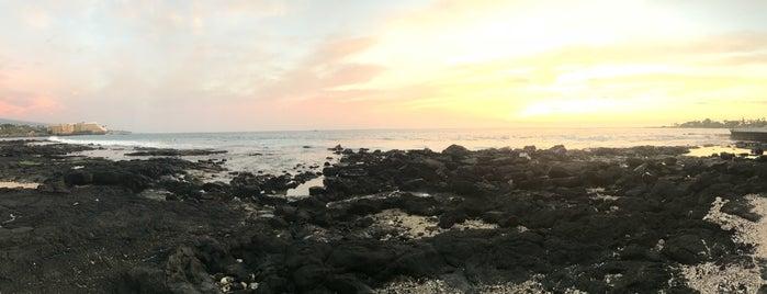 Hala Halawai Shoreline is one of Vasu : понравившиеся места.