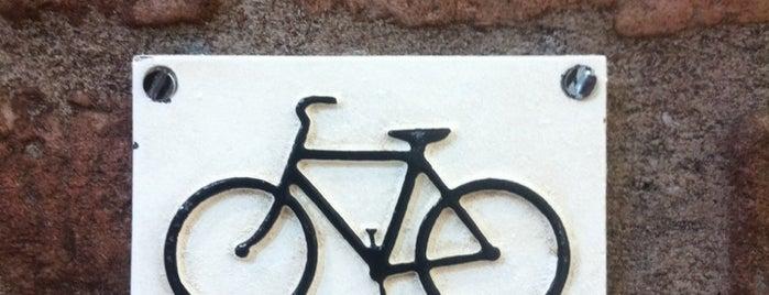 Life Bike Sport is one of Lieux qui ont plu à Nathalia.
