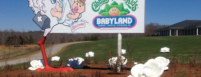 Babyland General Hospital is one of Summer Fun For The Family.