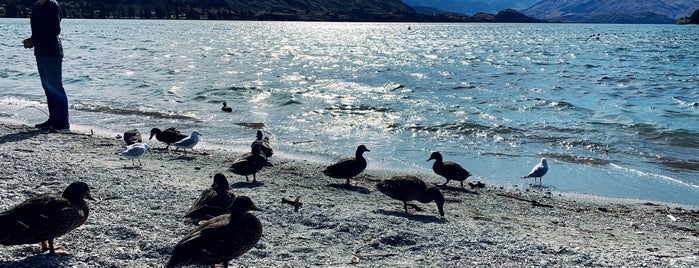 Lake Side Wanaka is one of Nuova Zelanda.