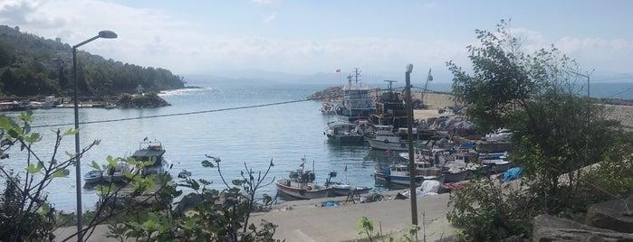 Uzun Saçlı'nın Yeri is one of Orte, die Onur Emre📍 gefallen.