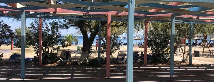 Tsamakia Beach is one of Lugares favoritos de Onur Emre📍.