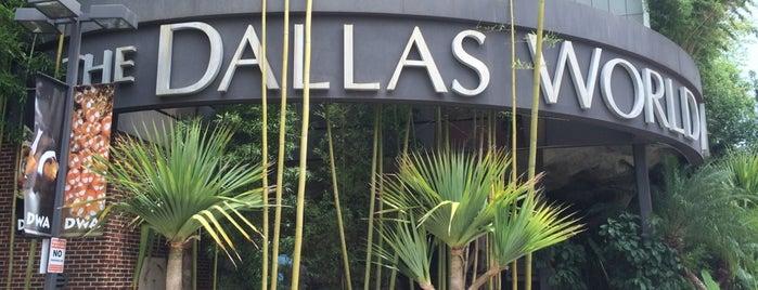 Dallas World Aquarium is one of Aquariums of the US.