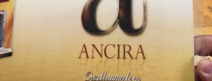 Restaurante Ancira is one of Danielさんのお気に入りスポット.