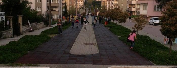 Dalyan Park Yürüyüş Yolu is one of Hidayet : понравившиеся места.