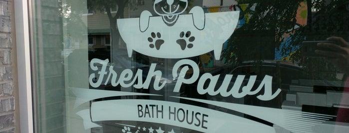 Fresh Paws Bath House is one of Williamsburg.