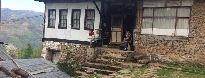 Şentepe(Kfarbağu) is one of Orte, die Sunay gefallen.