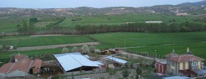 Karaovalı Çiftiliği is one of Enkara.