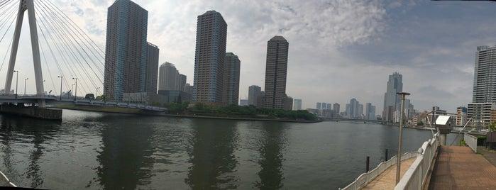 霊岸島水位観測所 is one of Gespeicherte Orte von Yusuke.