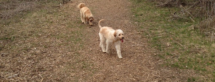 Prairie Moraine Dog Park is one of Dog Store/Pet Store.