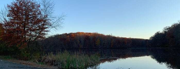 Perrineville Lake is one of Parks in Monmouth County.