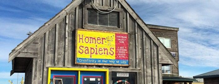 Homer Sapiens is one of Freaker USA Stores Alaska.