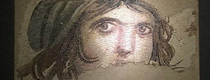 Zeugma Mozaik Müzesi is one of Yiyorum Ama Kilo Almıyorum'un Beğendiği Mekanlar.