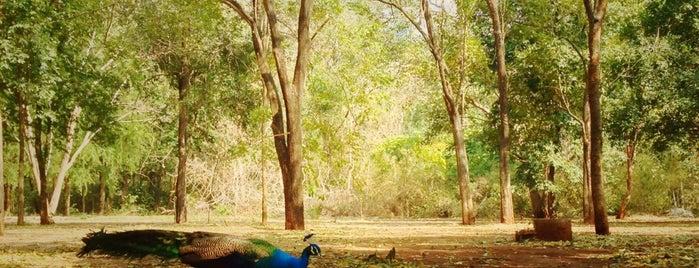 วัดเขาจีนแล (วัดเวฬุวัน) is one of Yodpha's Liked Places.