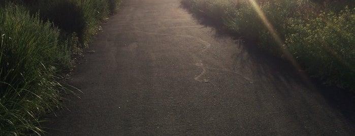 Mayberry Park is one of Orte, die Angelle gefallen.