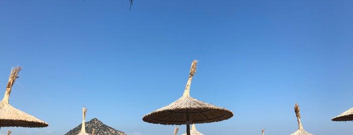 La BREZZA Beach is one of Bodrum.