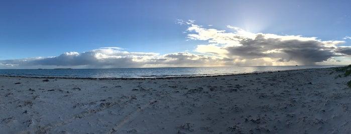 Cervantes Beach is one of สถานที่ที่ Nate ถูกใจ.