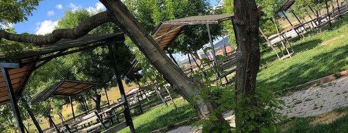 Özbal Mesire Alanı is one of Ankara Mesire Alanları.