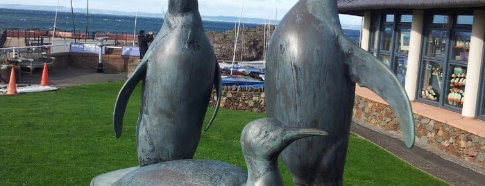 Scottish Seabird Centre is one of Lieux sauvegardés par Katya.