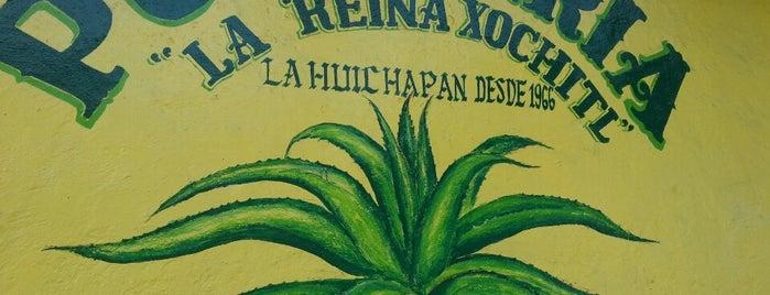 Pulquería La Huichapan is one of Pulquerias.
