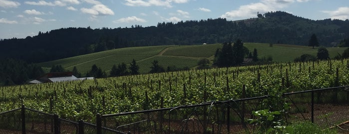 Crumbled Rock Winery is one of Wineries in Willamette Valley.