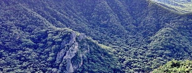 Parque Nacional de Ubajara is one of Ubajara/ Ibiapaba.