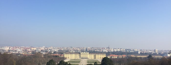 Schlosspark Schönbrunn is one of สถานที่ที่ Aytek ถูกใจ.