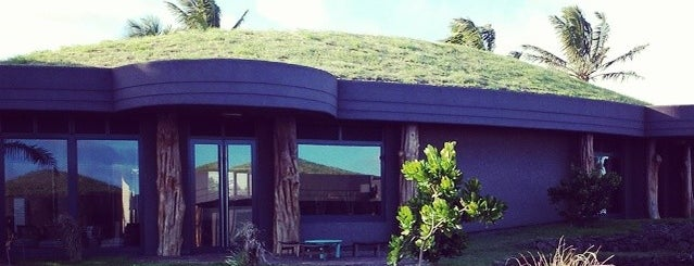 Hotel Hangaroa Eco Village & Spa is one of Rodrigoさんのお気に入りスポット.