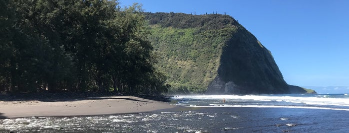 Waipi'o Beach is one of William's Liked Places.