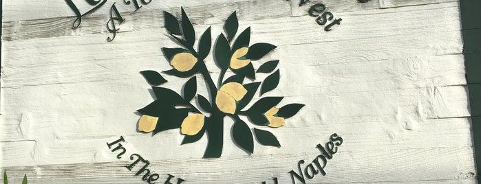 Lemon Tree Inn is one of Adolfoさんのお気に入りスポット.