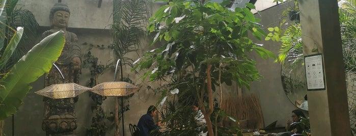 Plantasia is one of Lugares para visitar.