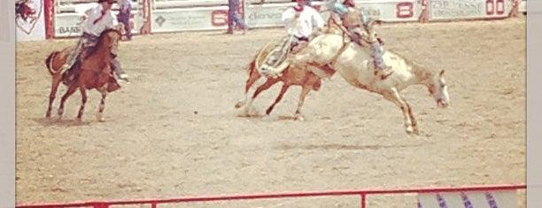Frontier Days Rodeo Stadium is one of Cheyenne.