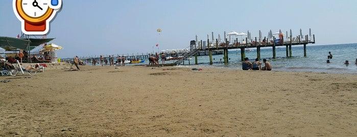 Tek-ün Beach is one of Lieux qui ont plu à Nurdan.