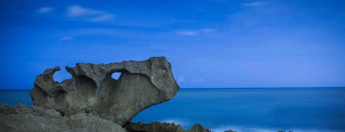 Ojo Del Buey is one of Exploring Puerto Rico.