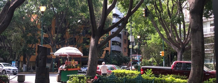 Cicatriz is one of CDMX - Mexico City Food and Site Seeing.