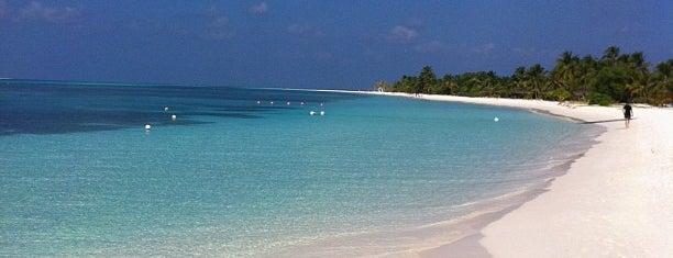 Kuredu Island Resort is one of glsh4574さんの保存済みスポット.