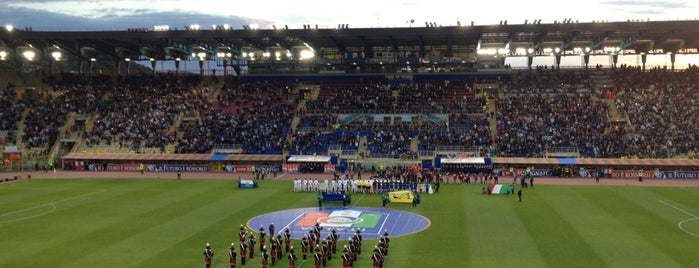Stadio Renato Dall'Ara is one of Lega Italia Serie A TIM Stadium (Season 2013-2014).