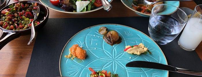 Tershane Restaurant is one of Gourmet.