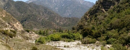 San Bernardino National Forest is one of National Recreation Areas.