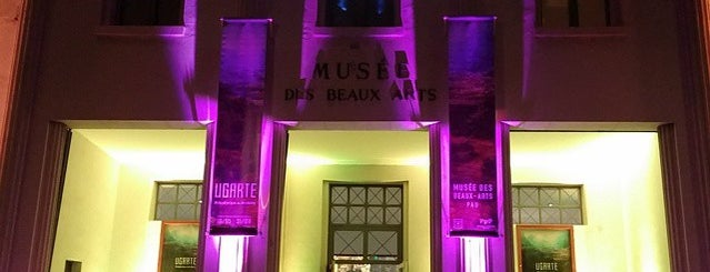 Musée des Beaux Arts de Pau is one of Les incontournables de Pau-Pyrénées.